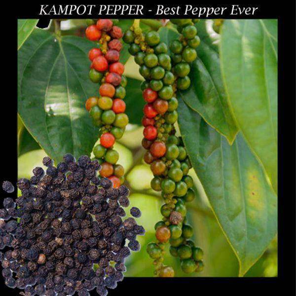 Best Pepper Ever