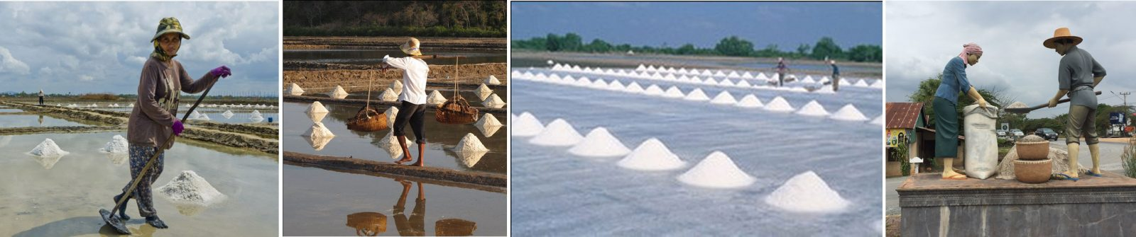 Kampot Salt Production
